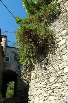 Fanghetto Frazione di Olivetta San Michele (IM) Val Roia http://ift.tt/2kfvNwP