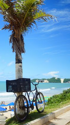 Brazil, Praia de Ponta Negra, Natal | Flickr - Photo Sharing