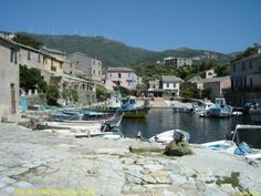 Centuri//Centuri est une commune française située dans le département de la Haute-Corse et la région Corse. Wikipédia