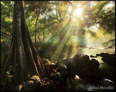 Holy Sunstar! by Paul Marcellini, via 500px