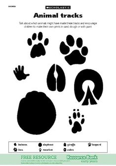 Activity sheet featuring the tracks of wild safari animals Safari Game, Safari Party, Jungle Party, African Animals, African Safari, Animal Footprints, Jungle Theme, Jungle Safari, Woodland Theme