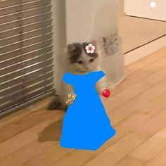 Cute Cat Memes, Funny Animal Memes, Funny Cats, Stupid Funny Memes, Funny Relatable Memes, Haha Funny, Cat Icon, Cute Animals, Funny Animals