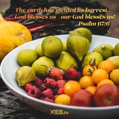 We share in God's blessings. #VerseOfTheDay #HelpingYouLiveWell #Harvest #Abundance Verse Of The Day, Bible Scriptures, Abundance, Psalms, Blessings, Harvest, Blessed, God, Vegetables