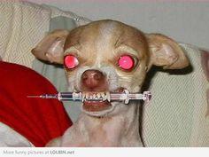 Ok Doc, I'm ready for my Botox