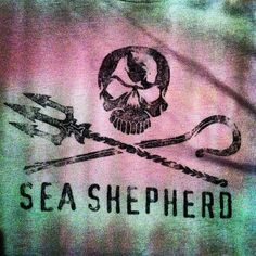 Sea Shepherd Happy Sing, Sea Shepherd, Save Our Oceans, Fight The Good Fight, Make A Donation, Conservation, Activists, Whales, Diving