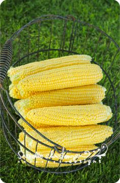 fresh corn on the cob! Yum my husband's grandmother made the best creamed corn in an iron skillet!