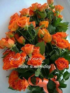 Happy Good Morning Quotes, Good Morning Dear Friend, Good Morning Thursday, Good Night Friends, Good Morning My Love, Morning Inspirational Quotes, Good Morning Picture, Good Morning Flowers, Good Morning Messages