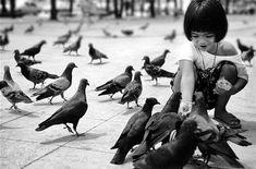 Repin this  #Photography #Photographie #Photographer #Photog #Photogs #Camera   Credit : http://sigpras.deviantart.com/art/thai-no-4-16656402