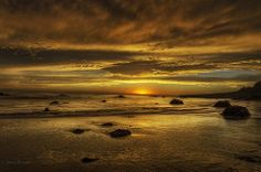Golden sea and sky