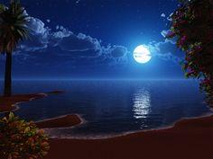 Night Sky Fantasy Beach 588804