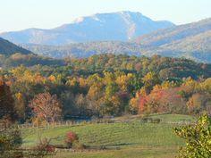 Little Washington Winery and Vineyards - Blue Ridge Line. Winestock on July 18