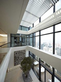 """House Of The Tree rises above the city of Shenzhen, China, drawing in natural light through a defining feature of the space – a two-floor interior space partly glazed and open to the idea of """"living between the city and the nature"""". Designed by Kokai Studios…, the penthouse apartment occupying the 48th and 49th floors of a high-rise building..."""