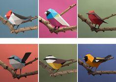 Un kit para armar aves de papel, con sus instruccionesA kit to assemble paper birds, with its instruction manual