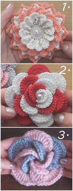 Top 3 Beautiful flowers