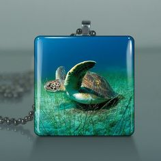 Sea Turtle / Large Glass Tile Necklace Pendant / by crystalbouquet, $12.50 #glasstilejewelry http://www.ecrafty.com/c-6-photo-jewelry.aspx