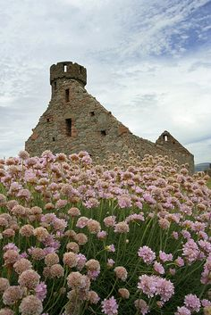 Peel Castle ruins with flowers             #travel #Scotland #UK