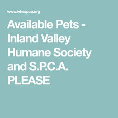 Available Pets - Inland Valley Humane Society and S.P.C.A.    PLEASE