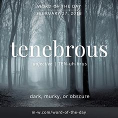 Today's #wordoftheday is 'tenebrous'  .  #language #merriamwebster #dictionary