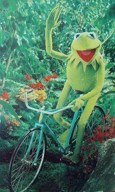 Kermit takes a ride Kermit And Miss Piggy, Kermit The Frog, Jim Henson, Sapo Kermit, Funny Kermit Memes, Ichigo E Rukia, Sapo Meme, Funny Frogs, Fraggle Rock