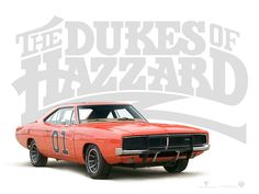 Orange Just Makes Everything Look  Better Like The Dukes of Hazzard General Lee. www.thehousepainters.co.nz