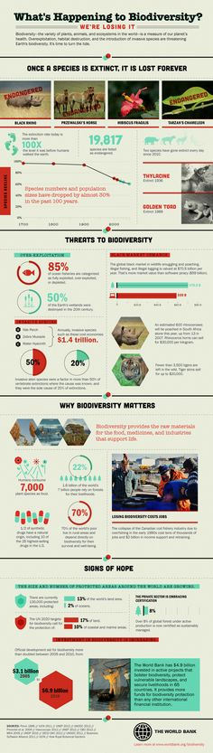 What's Happening to Biodiversity - sobering infographic from @EnvironmentMatters shows that two species have gone extinct everyday since 2010