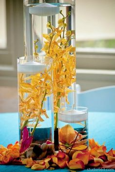 Multi-level submerged mokara orchids in yellow