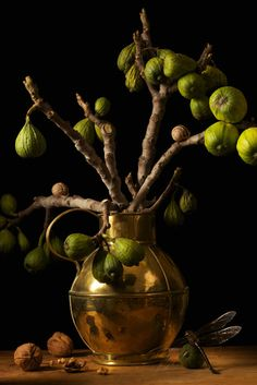 Figs, After G.F. 2009 © Paulette Tavormina