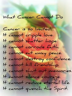 beautifully put. I hate cancer. @Tiffiany Hora Love you <3