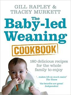 Yummy discoveries the baby led weaning recipe book by felicity the baby led weaning cookbook reviews daily4babyby food recipes forumfinder Gallery