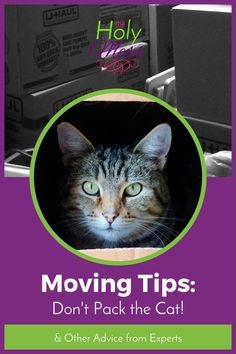 Moving Tips: Dont P