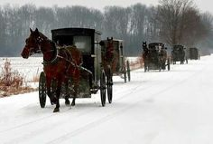 Amish - Not sure if this is PA or Ohio, but certainly a scene you would see on country roads in winter. Snow Scenes, Winter Scenes, Black Butler, Amish Family, Amish Culture, Amish Community, Amish Country, Country Life, Horses