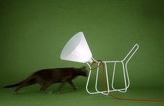 Oh, I am all about dog-shaped lamps, y'all! All about 'em. This simple wire and cone (of shame) version from Barcelona-based design studio Lagranja Design is my newest obsession. Sadly, its limited edition-ness means it's all sold out, but we can still admire from afar, yes?