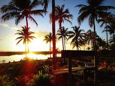 Ontem, 04/12/2015 enquanto assistia uma reportagem do Globo Repórter fiquei impressionada com a beleza e o propósito pelo qual foi criado a comunidade de Piracanga, e como sou muito curiosa fiz uma...