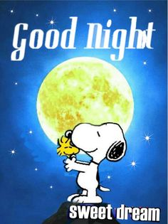 Good Night Wishes, Good Night Sweet Dreams, Good Night Quotes, Snoopy Love, Snoopy And Woodstock, Charlie Brown, Goodnight Snoopy, Peanuts Characters, Fictional Characters