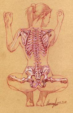 Corps et anatomie Anatomy Sketches, Anatomy Drawing, Anatomy Art, Body Anatomy, Human Anatomy, Anatomy Organs, Heart Anatomy, Body Drawing, Life Drawing