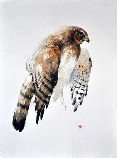 Hen Harrier, 76x56 cm - Karl Mårtens