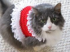 This Santa Pet Sweater is the cutest winter outfit for your favorite furry friend. It works for cats or dogs, and it is a simple red and white pattern.