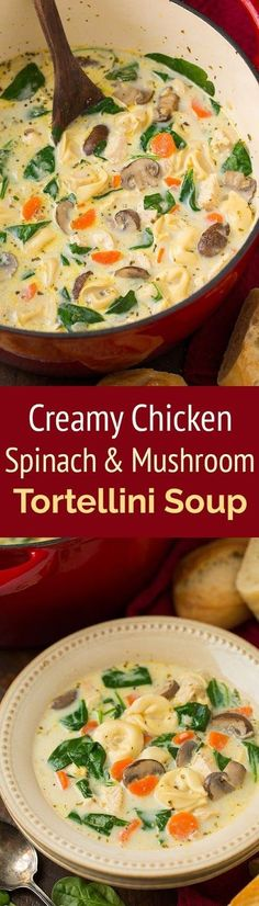 Creamy Chicken, Spinach and Mushroom Tortellini Soup | World Recipes Collection