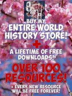 Every World History Resource in My Store - over a years' worth of 100+ amazing activities plus free downloads of every new item added in the future FOR LIFE! With new products being added every week, this is an amazing time & money saving deal!
