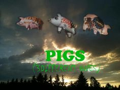 PIGS 3 different ones