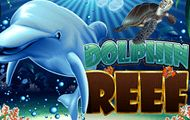 #DolphinReef is a 5 reel slot with 20 pay lines and a theme that portrays the underwater world and dolphins.  If you sign up to play Dolphin Reef slot machine, you will get to #enjoy a fun and colorful game with #great graphics and #animated icons. The reels have symbols such as dolphins, turtles, clown fish, treasure chests and seahorses that will take you into the deep blue and give you some money.