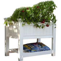 New England Arbors 3 ft x 2 ft Vinyl Raised Garden Metal Raised Garden Beds, Elevated Garden Beds, Raised Garden Planters, Elevated Bed, Raised Beds, Garden Pots, Plastic Planter Boxes, Window Planter Boxes, New England Arbors