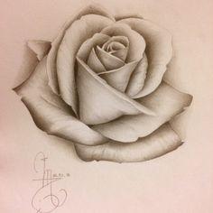 Une deuxième rose réaliste !