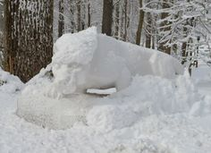 PENN STATE – CAMPUS – Penn State Abington Lion Shrine needs brushed!