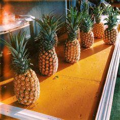 Summer. Sweet juicy pineapples