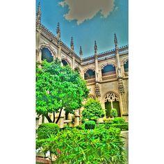 #españa #estaes_spain #esta_es_todo #toledoturismo #Toledo#estaes_castillamancha #turismo #travel #tourist #photooftheday #plants #green #ig_worldclub #igersspain #instwood #igerstoledo #instagram_spain #amatoledo #architecturelovers #architecture #arquitectura #architexture #beautiful #sky #skylovers #spain #blue #beautifulday #fotodeldia #monumentalspain