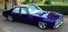 Slick in Purple