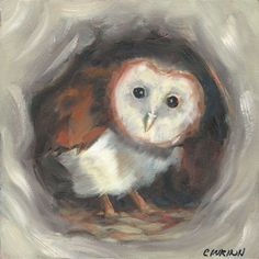 """Baby Barn owl waiting for his dinner to arrive. Where's mom?%0A%0AThis adorable baby owl is painted with acrylics on acid free Ampersand Gessobord 1/8"""" thick. Affordable and Unique as a gift! %0A%0AThis paint"""