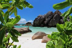 Seychelles, Park, Water, Outdoor, Gripe Water, Outdoors, Parks, Outdoor Games, The Great Outdoors