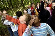 North Aurora - A visit to the Red Oak Nature Center will help folks learn about the native plants and animals of the Fox River Valley. Interpretive center, hiking trails and tours of Devil's Cave.